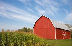 red barn next to corn
